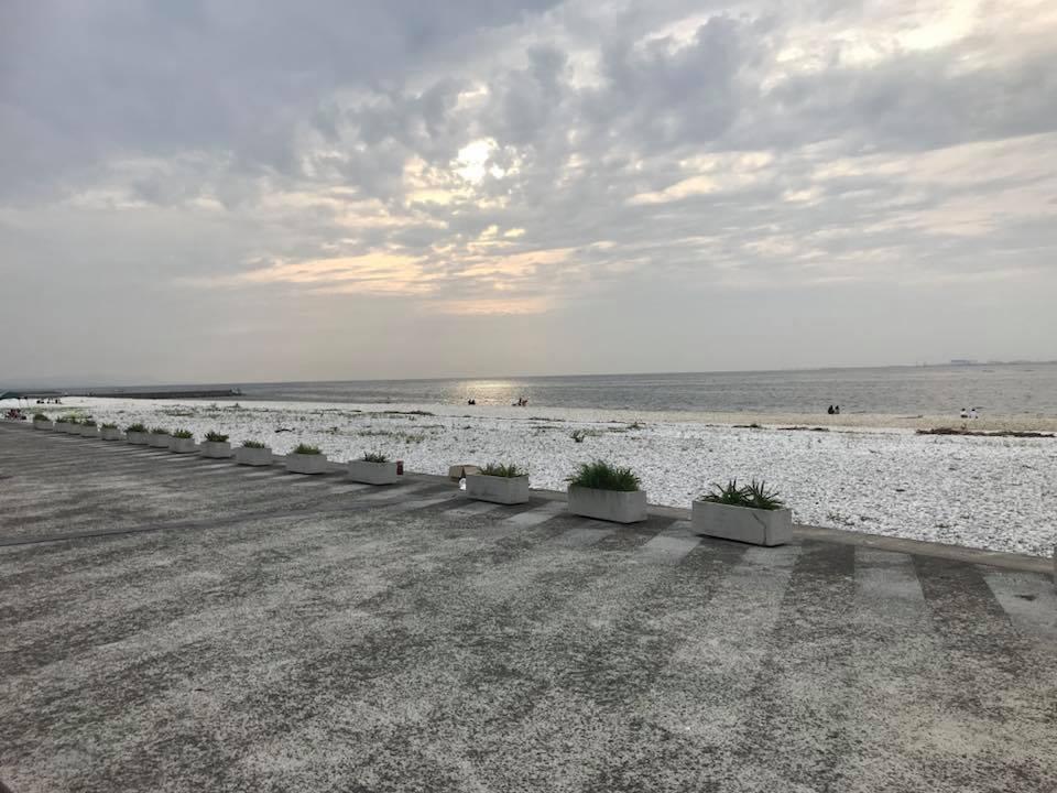 りんくう公園マーブルビーチ