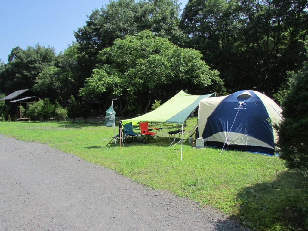 浅間高原 くるみの森キャンプ場